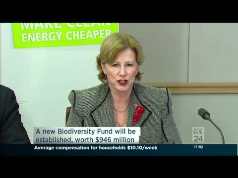 Carbon Tax Conference Greens ABC News 24