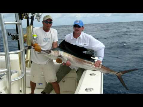 Sailfish - Offshore Fishing in Miami on TheBeast  -