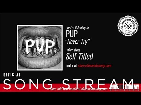 Pup - Never Try