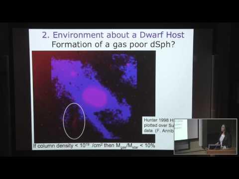 The Dwarf Galaxy Zoo