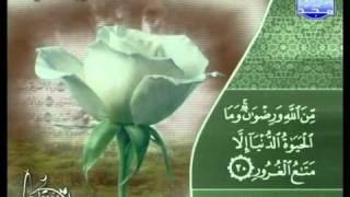التلاوات المختارة | الشيخ ماجد الزامل ( سورة الحديد )