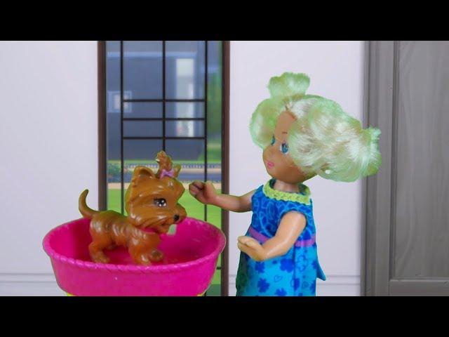 Rodzinka Barbie- Przedszkolaki w schronisku. Bajka dla dzieci po polsku