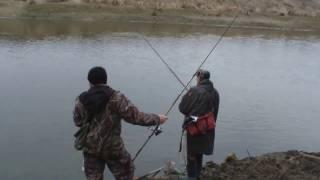 ловля плотвы на поплавочную на днепре