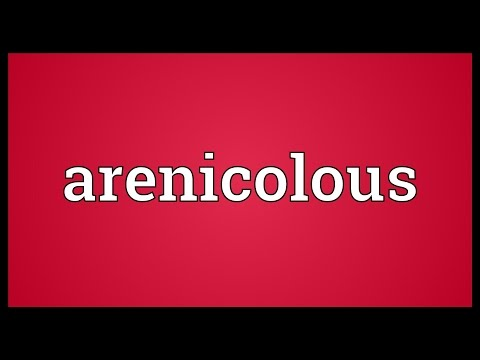 Header of arenicolous