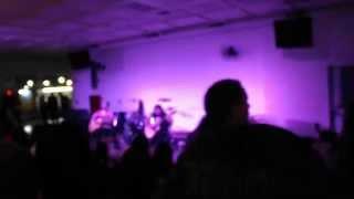 Gatos & Alfaces Rock'n'Poetry