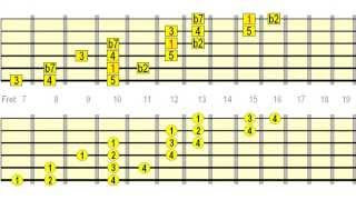 Neck Dominating & Speed Building Guitar Scale Runs