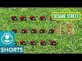 Sesame Street |  15 Ladybugs | PBS