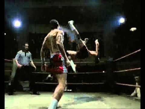 игры про бокс скачать через торрент