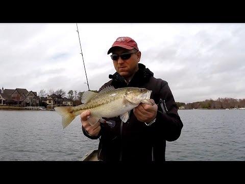 Spring Bass Fishing, Lake Norman   Mar  14, 2015