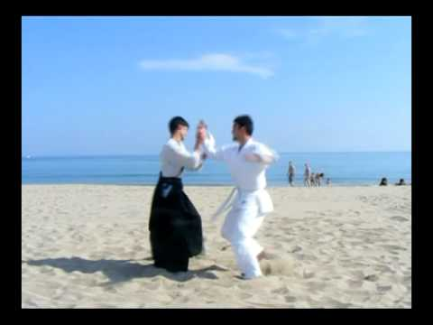 Aikido Training Image 1