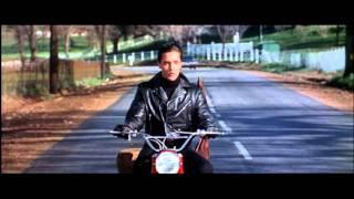 Watch Elvis Presley Roustabout video