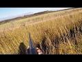 Охота #111 железный заяц