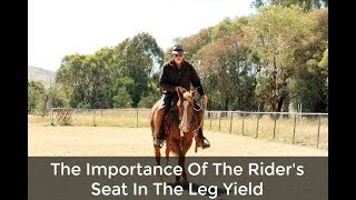 Importance Of A Rider's Seat In The Leg Yield