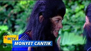 Highlight Monyet Cantik 2 - Episode 28