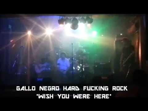 GALLO NEGRO HARD FUCKING ROCK  / WISH YOU WERE HERE (covers)