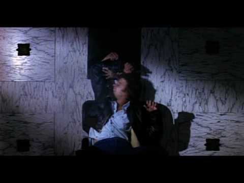 Phantasm (1979) Theatrical Trailer Video
