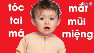 Dạy bé tập nói   Dạy bé học bộ phận cơ thể người mắt mũi miệng tai   Dạy bé học
