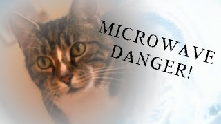 Microwave Danger! - With Harvey