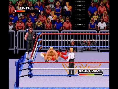 WWF Royal Rumble - Undertaker/Ric Flair Vs HBK/Razor Ramon-Vizzed.com - User video
