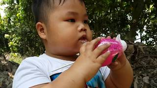 Baby Pretend Play With Fish Chicken Toys ❤ ChiChi ToysReview TV ❤ Children Toy In The Garden
