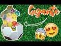 Lagu BALÓN DE FÚTBOL GIGANTE - CAJA DE REGALO