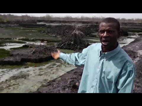 Niger Delta fish farmer remembers oil spill tragedy