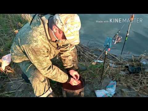 рыбалка на карася озеро сугояк