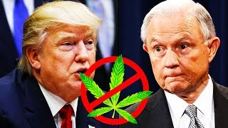 Trump Administration Coming For Your Weed