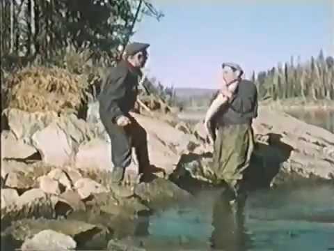 тайны мудрого рыболова 2 часть