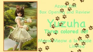 Doll Box Opening and Review: Yuzuha Meow Meow Limited ver. part 1