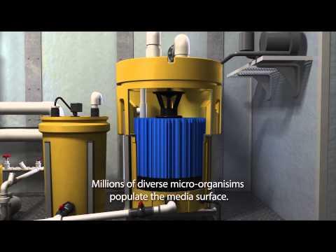 MarineFAST® Marine Sanitation Device LX-Series MARPOL