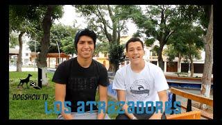 DogShowTV || Los Atrazadores