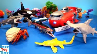 Animal Planet Deep Sea Submarine Playset - Learn Animals Names For Kids