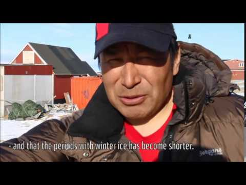 Climate witnesses in Greenland