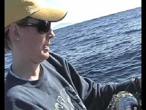tracy catches a yellowfin tuna