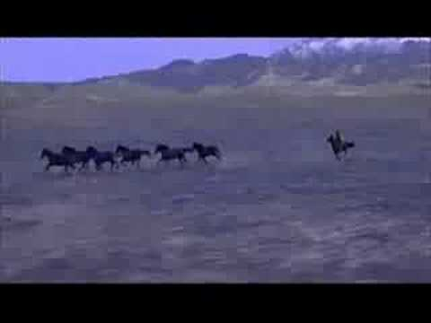 Seabiscuit Short Movie thingy