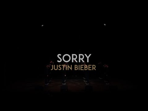 Sorry (Justin Bieber) - The Vanderbilt Melodores - Meloroo 2016