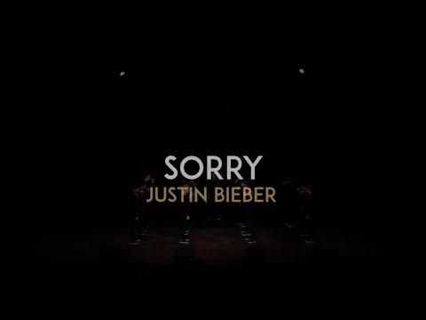 Sorry (Justin Bieber) - The Vanderbilt Melodores - Meloroo 2016