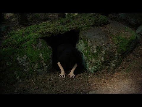 Открываем тайны ВОНЮЧЕГО леса! Что я нашел не сразу понял!