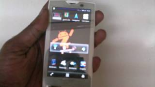 Xperia X10 white with Mirror Screen Protector.
