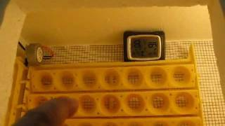 Sammax Bi-Metal Incubator Thermostat Review & Installation in a Home Made Incubator