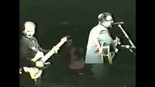 Watch Elvis Costello The Only Daddy That