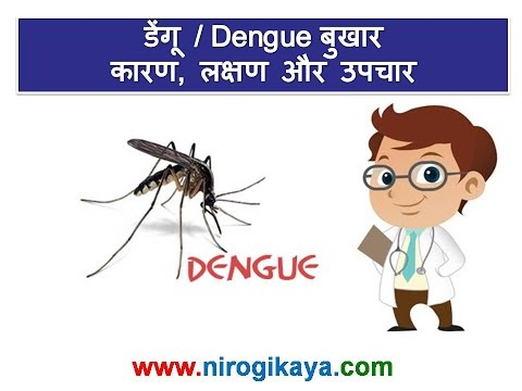Dengue fever Causes, Symptoms, Treatment and prevention tips in Hindi
