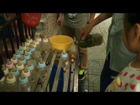 (Nanjing travel#1) ikan botol susu, Hongshan Zoo