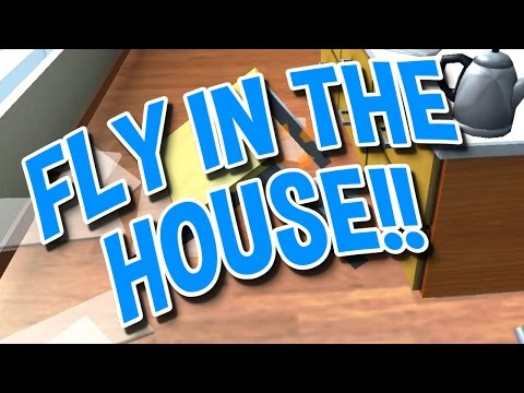 FLY IN THE HOUSE - Kill the Fly!