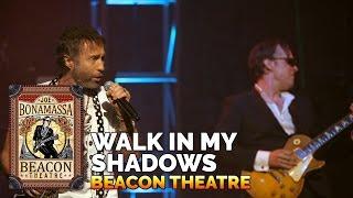 Watch Joe Bonamassa Walk In My Shadows video