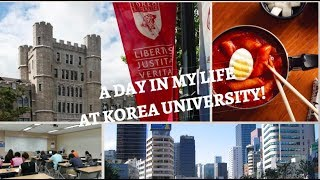 A Day in My Life at Korea University