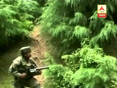 3 Killed in Army-militant encounter at Handwara in Jammu and Kashmir