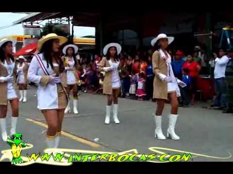 Desfiles 3 de noviembre 2010, colegios y escuelas, Interbocas.com