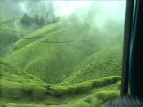 Munnar, Kerala - God's Own Paradise
